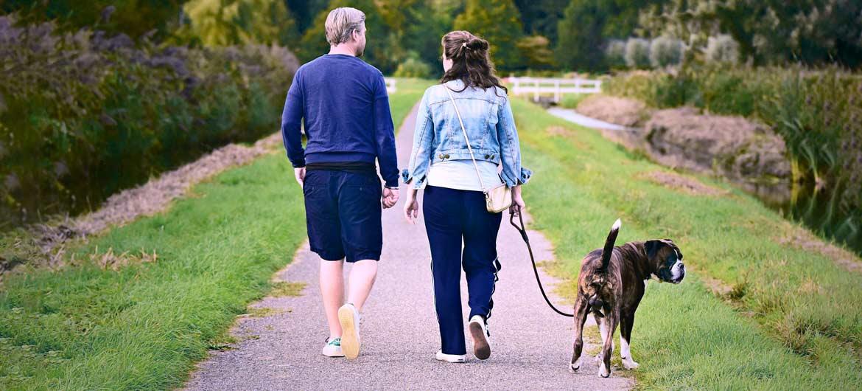 пара с собакой на поводке
